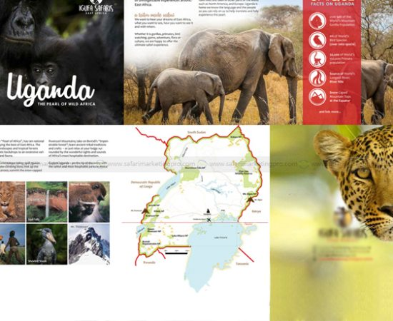 HOW TO CREATE THE PERFECT BROCHURE FOR YOUR SAFARI BUSINESS